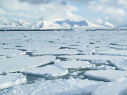 Seven50: Arctic Sea Ice Recovering from Last Year's Record Low