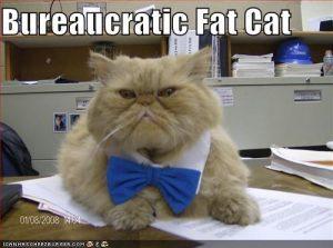 bureaucratic fat cat