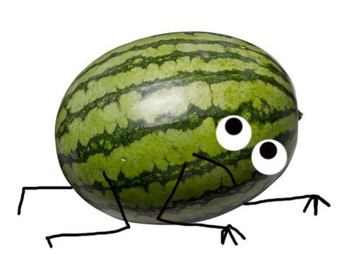 Watermelon Crawl in Florida Gets a Trail